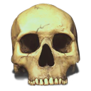 Skull Save Icon Format image #5267