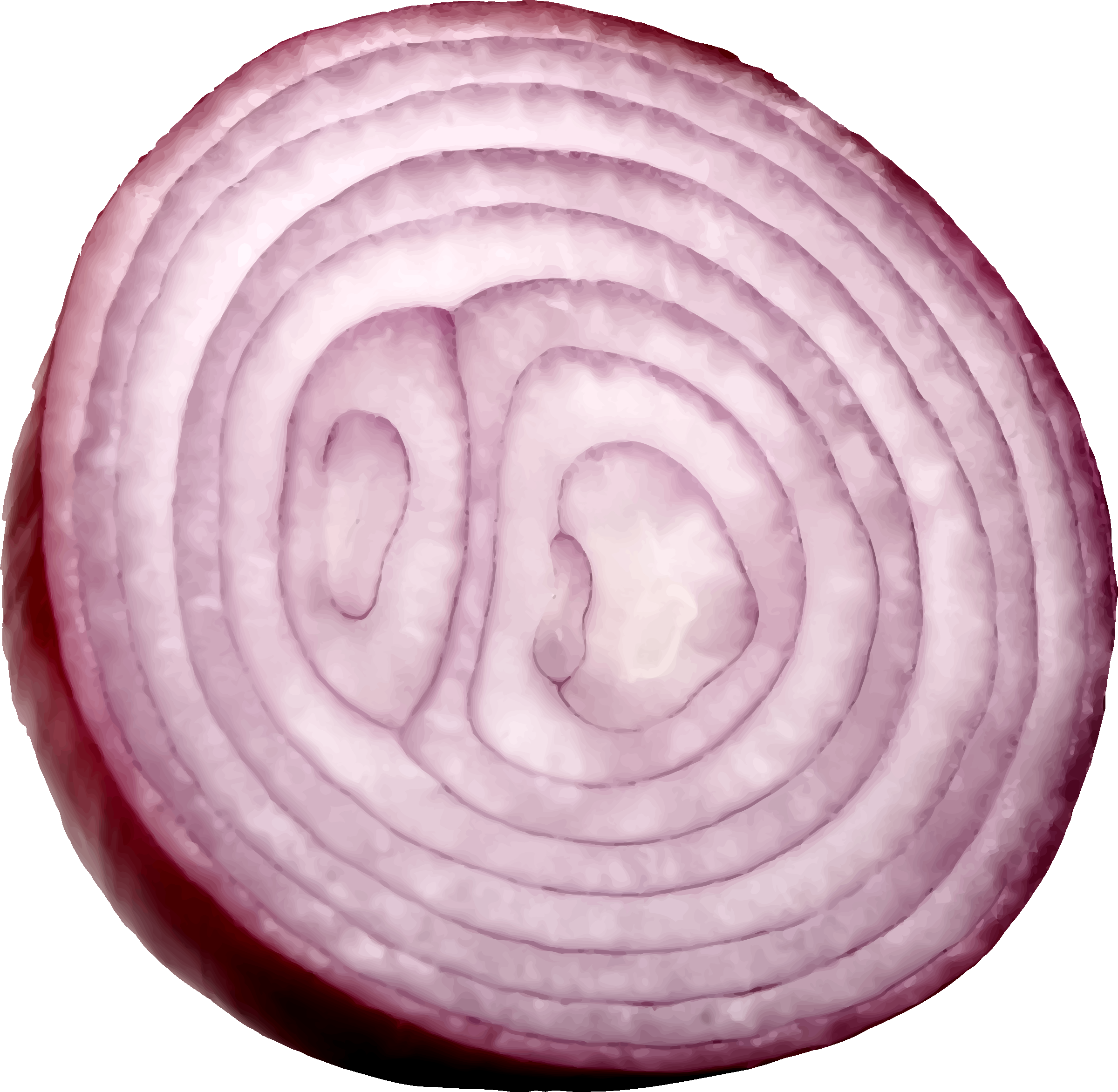 Slice Onion Png image #38744