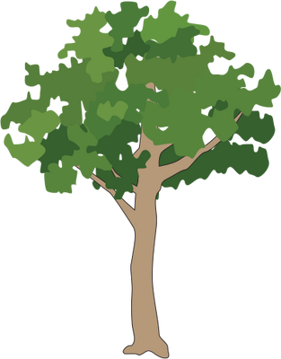 Icon Png Small Tree Download image #7695