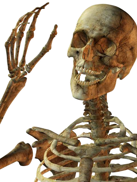 Smile Skeleton PNG image