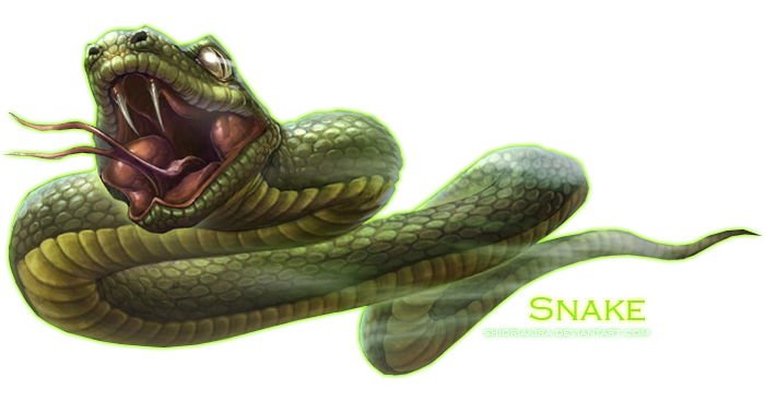 Snake Transparent Png Pictures Free Icons And Png