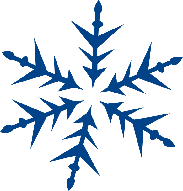 Snowflakes Png image #41268