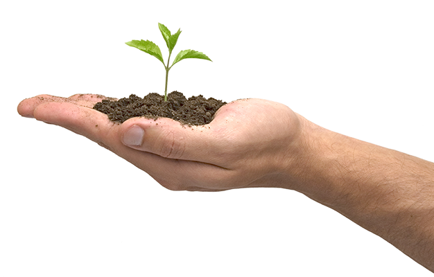 soil, tree, hands png
