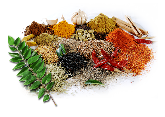 Spices Png image #43503