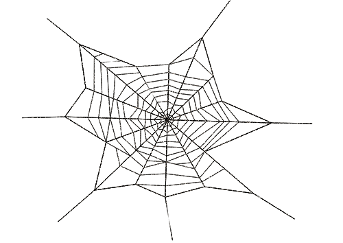 Png Clipart Spider Web Collection