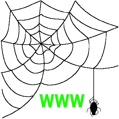 Download Spider Web PNG Free