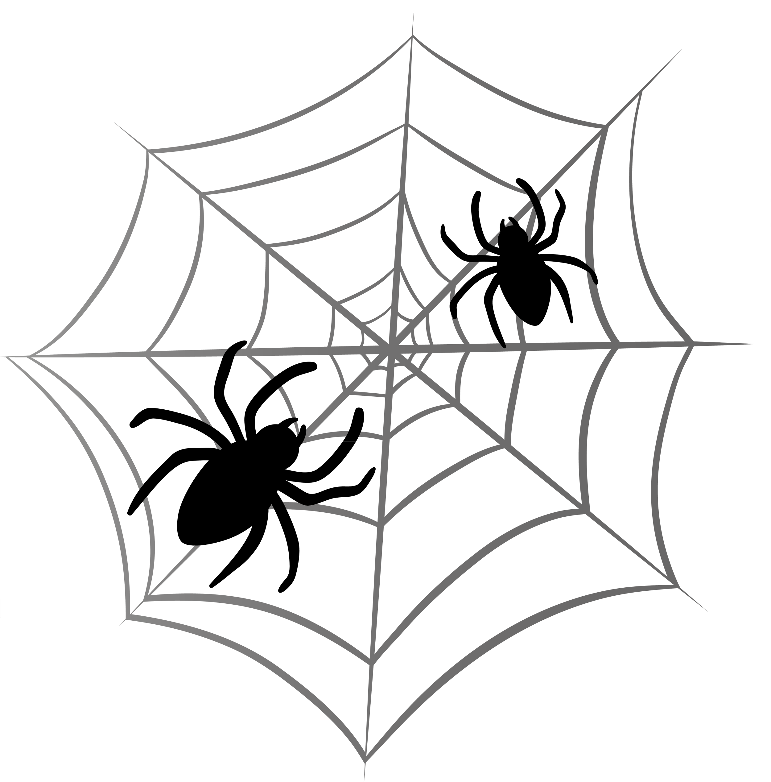 Best Spider Web Png Clipart image #34741