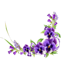 Spring, flowers, happiness png