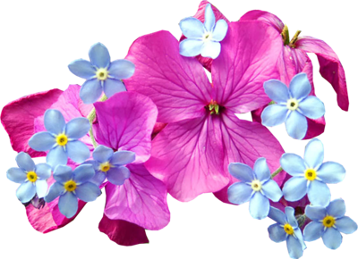 Spring Flowers purple png