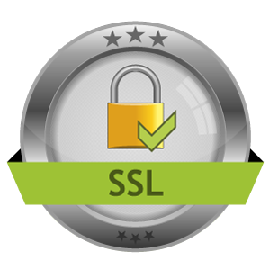 Icon Vector Ssl Encryption