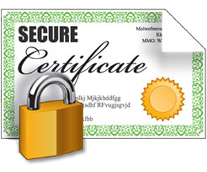 Ssl Encryption Icon Vector image #15239