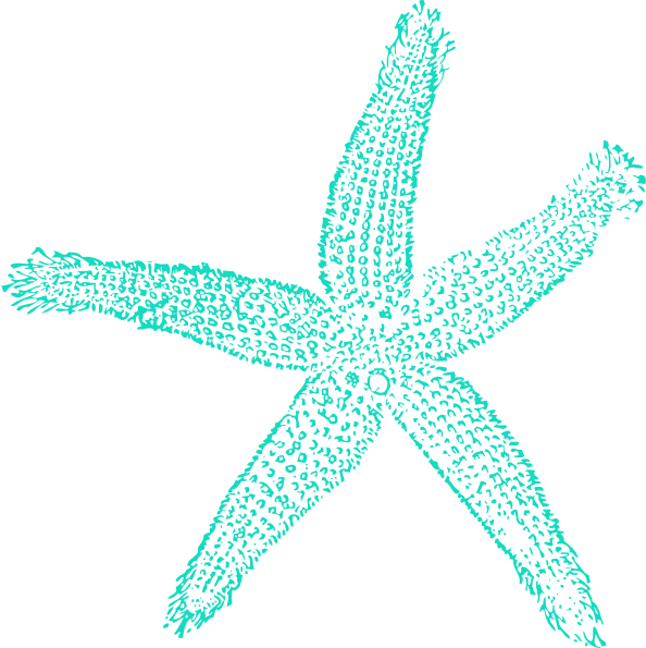 Starfish Transparent PNG Pictures - Free Icons and PNG ...