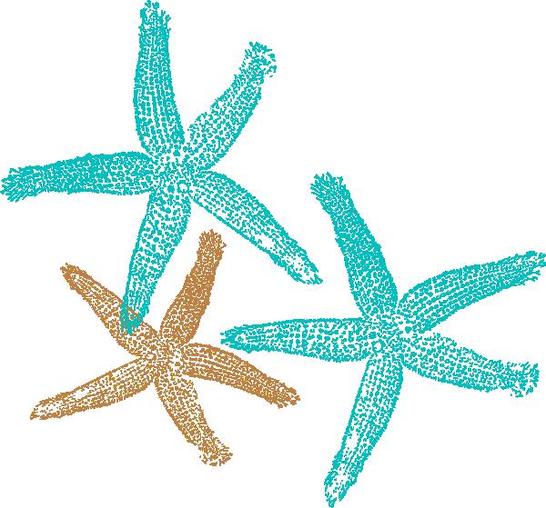 Png Starfish Vector