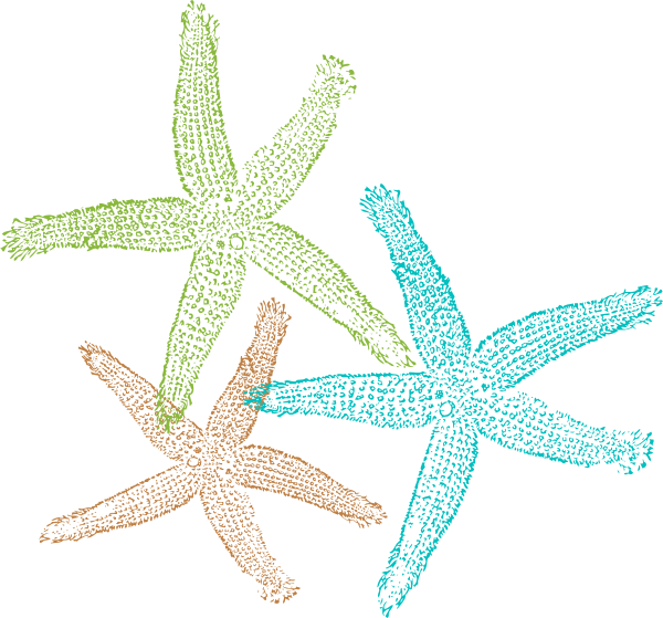 Free Download Of Starfish Icon Clipart image #19869