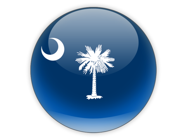 State South Carolina Icon image #38942