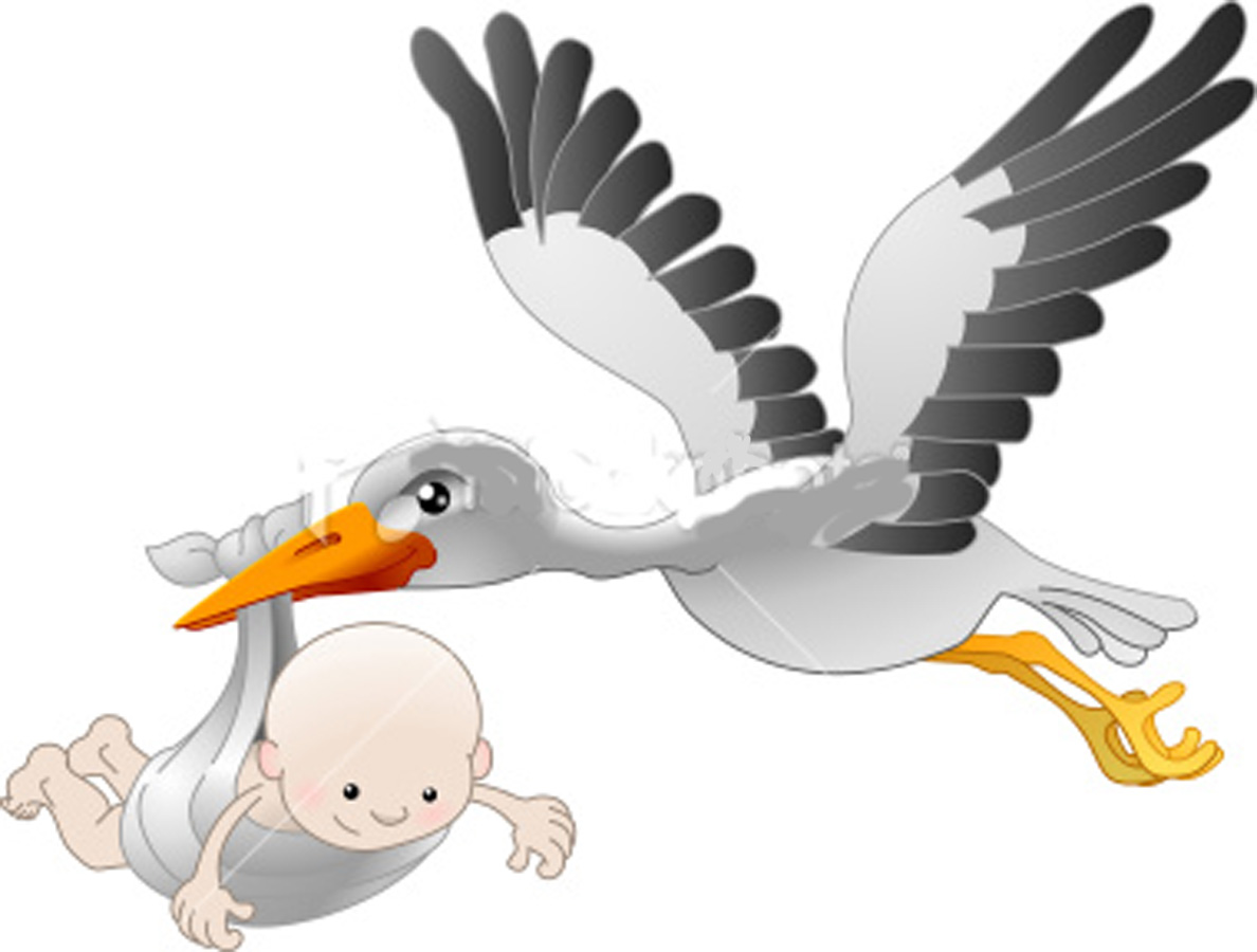 High Resolution Storch Png Clipart image #18389