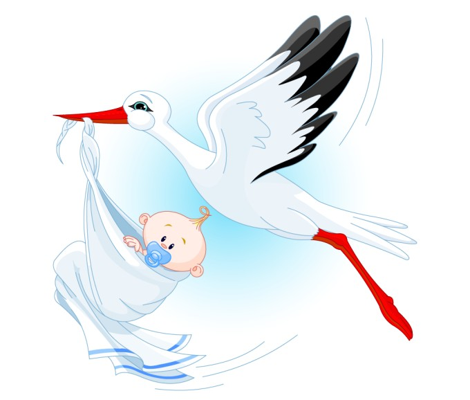 Stork With New Born Child Png image #18372
