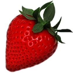 Strawberry Free Images Download image #22945