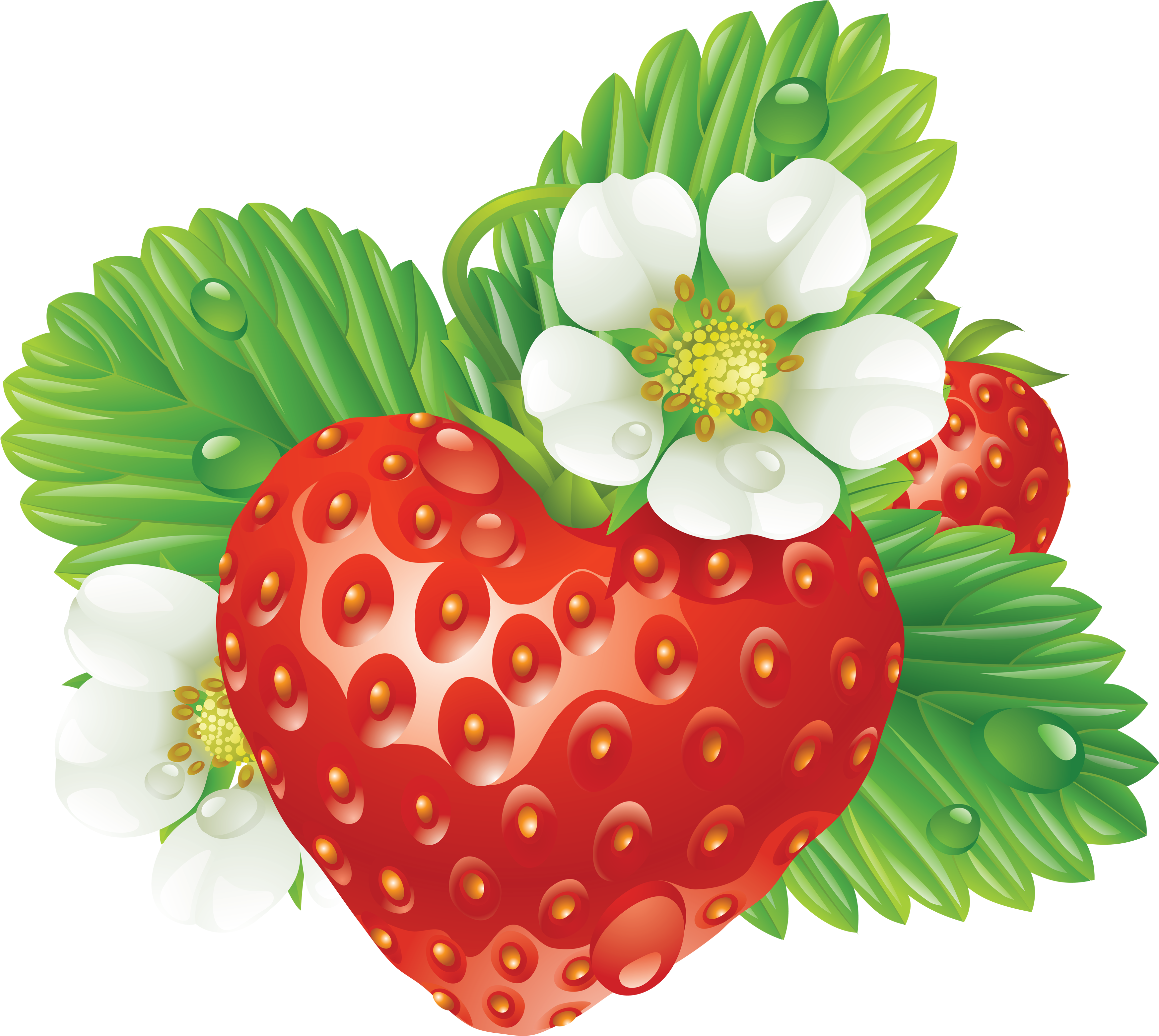 Strawberry Clip Art image #22967
