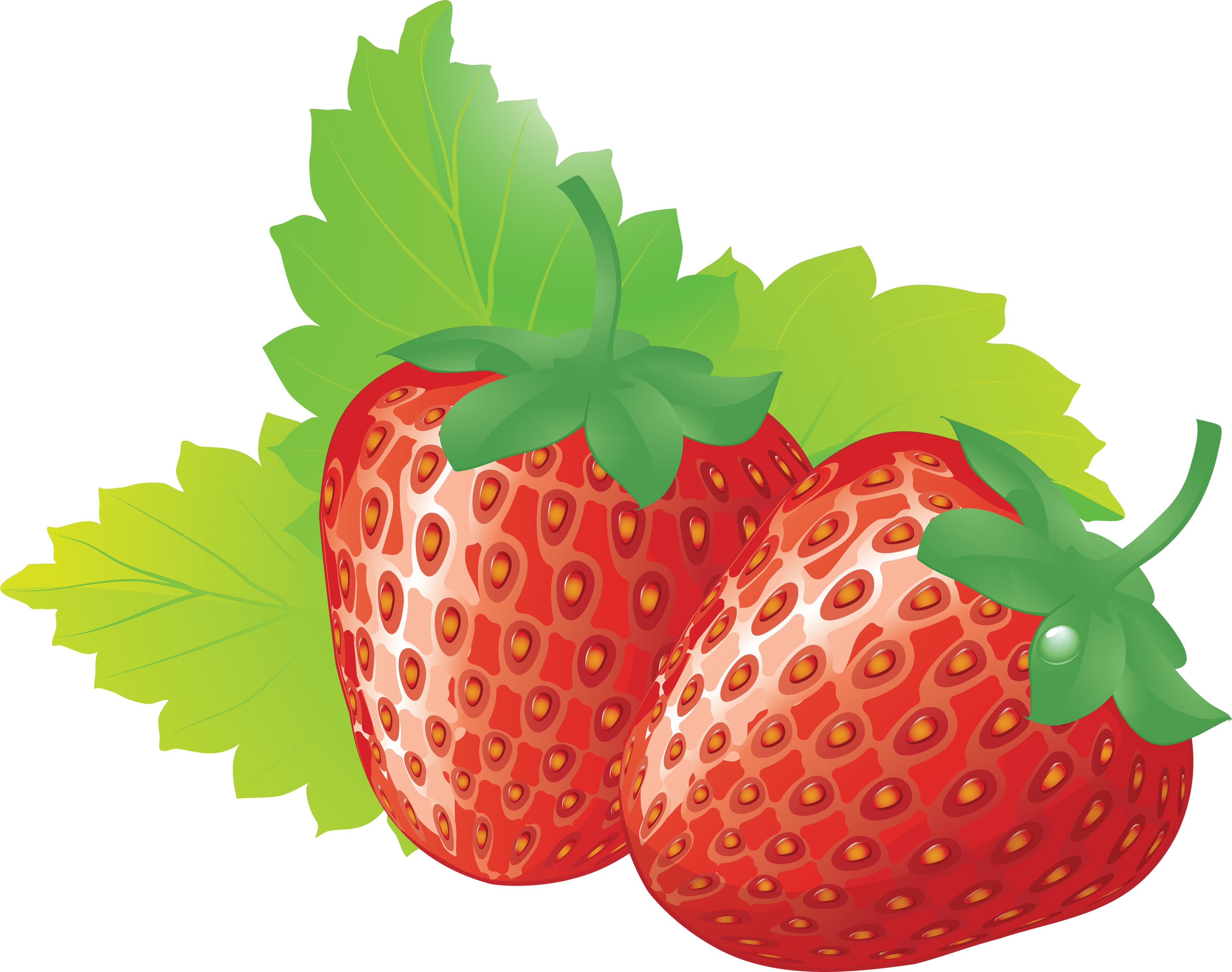 High Resolution Strawberry Png Clipart image #22989