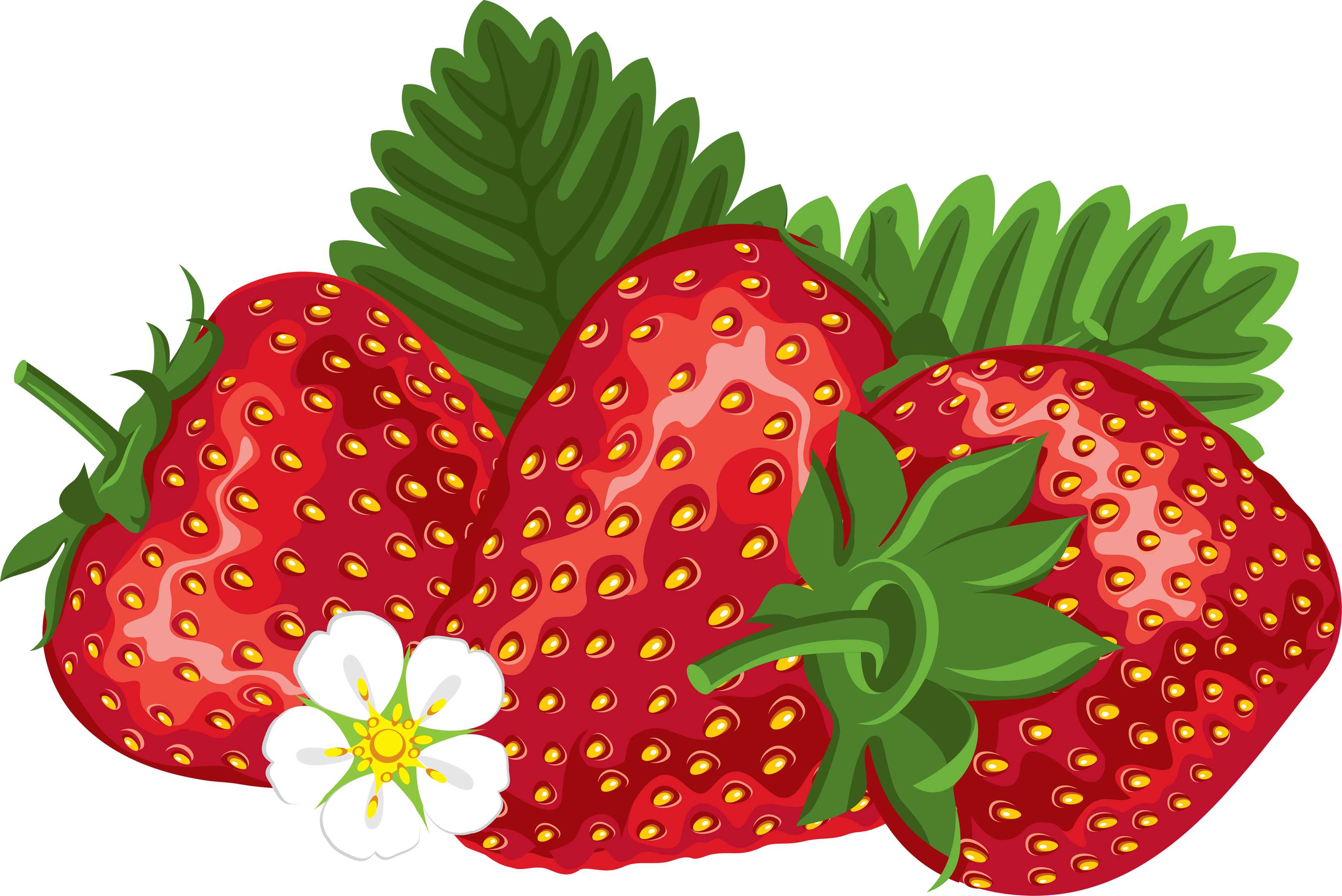 Strawberry PNG Image image #22931