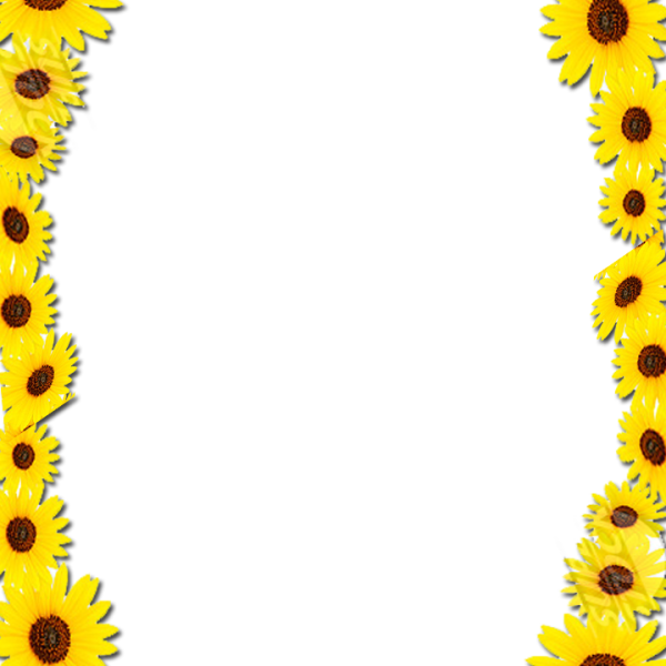 sunflower border frame png 41034 free icons and png backgrounds Butterfly Swirl Clip Art Colorful Butterfly Clip Art