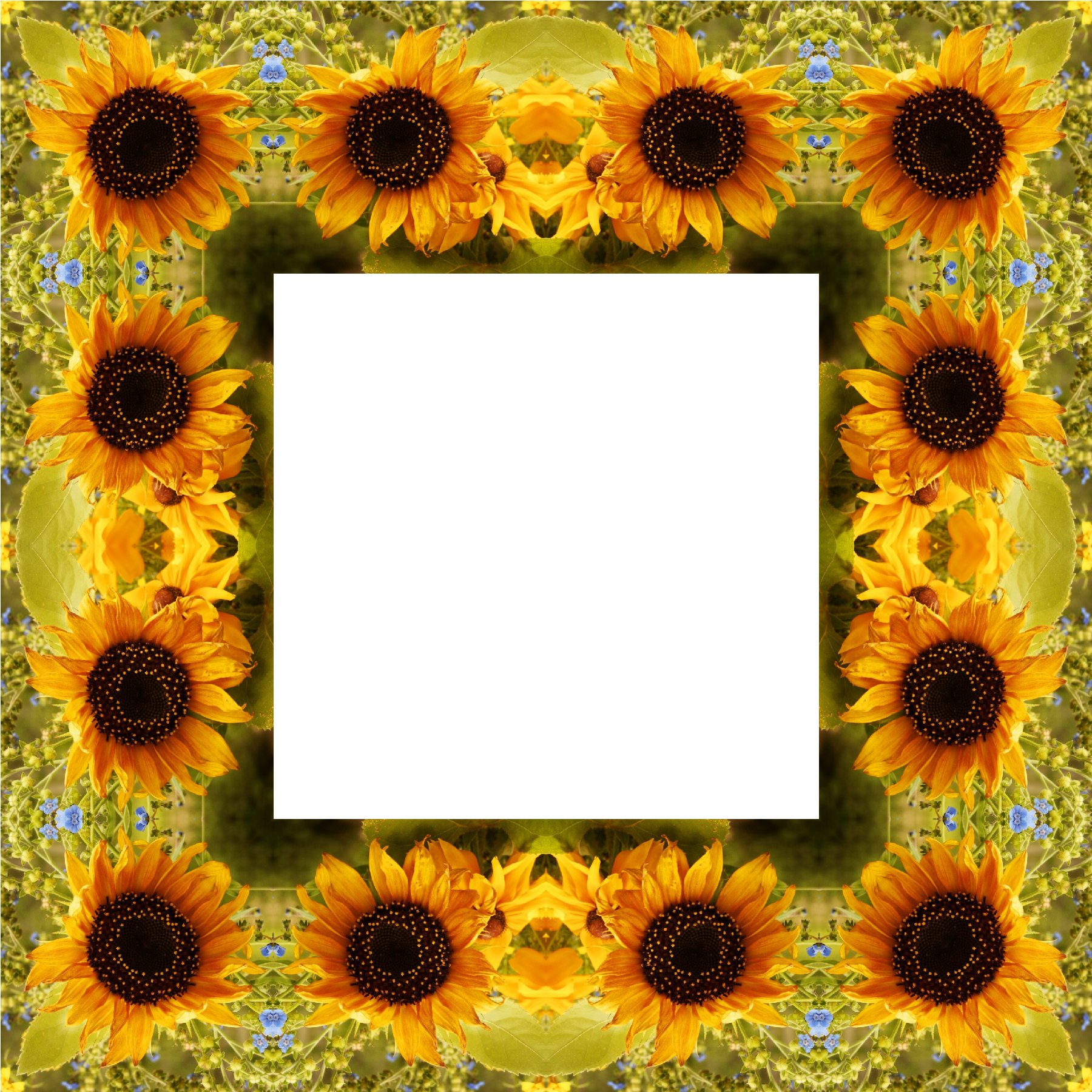 Clipart Sunflower Png Best