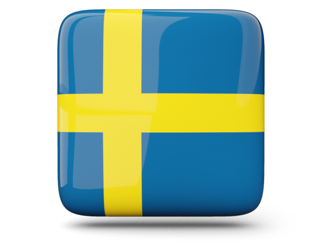 Icon Sweden Flag Vector image #16115