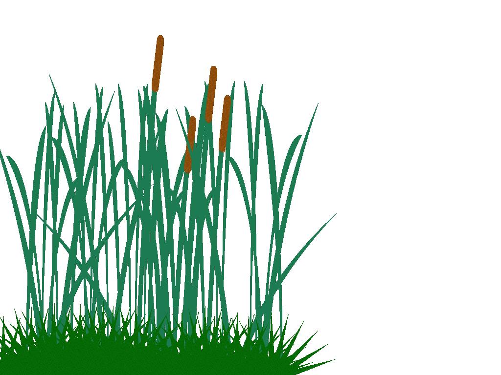 Tall Grass Clip Art Png image #44174