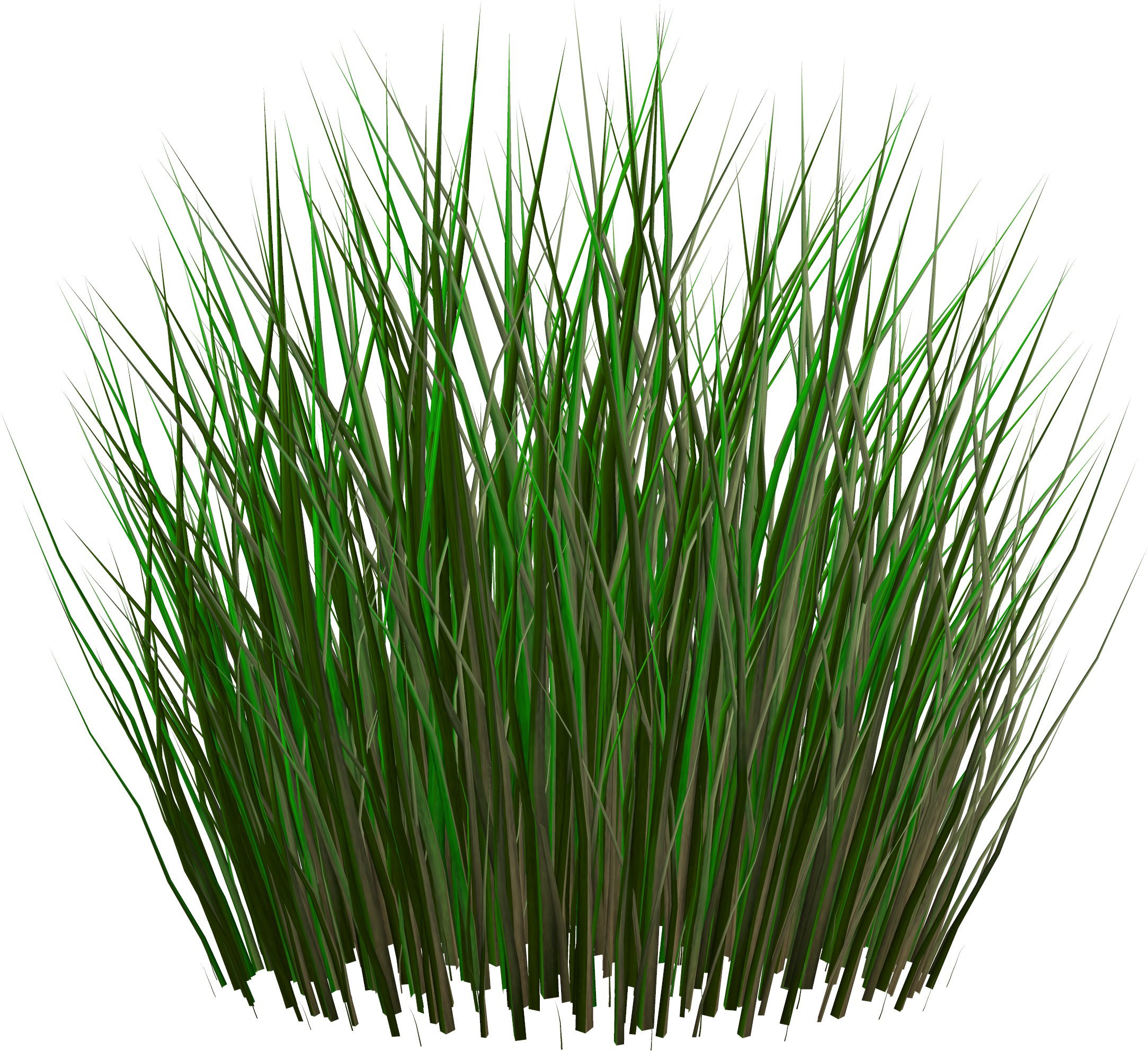Tall Grass PNG images, pictures
