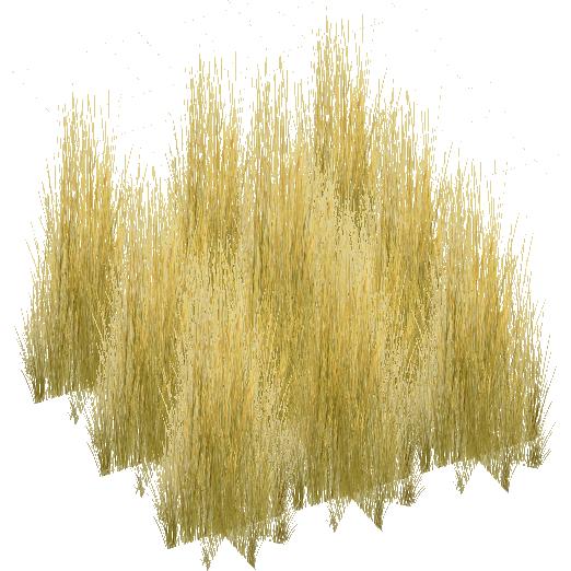 tall grass texture png