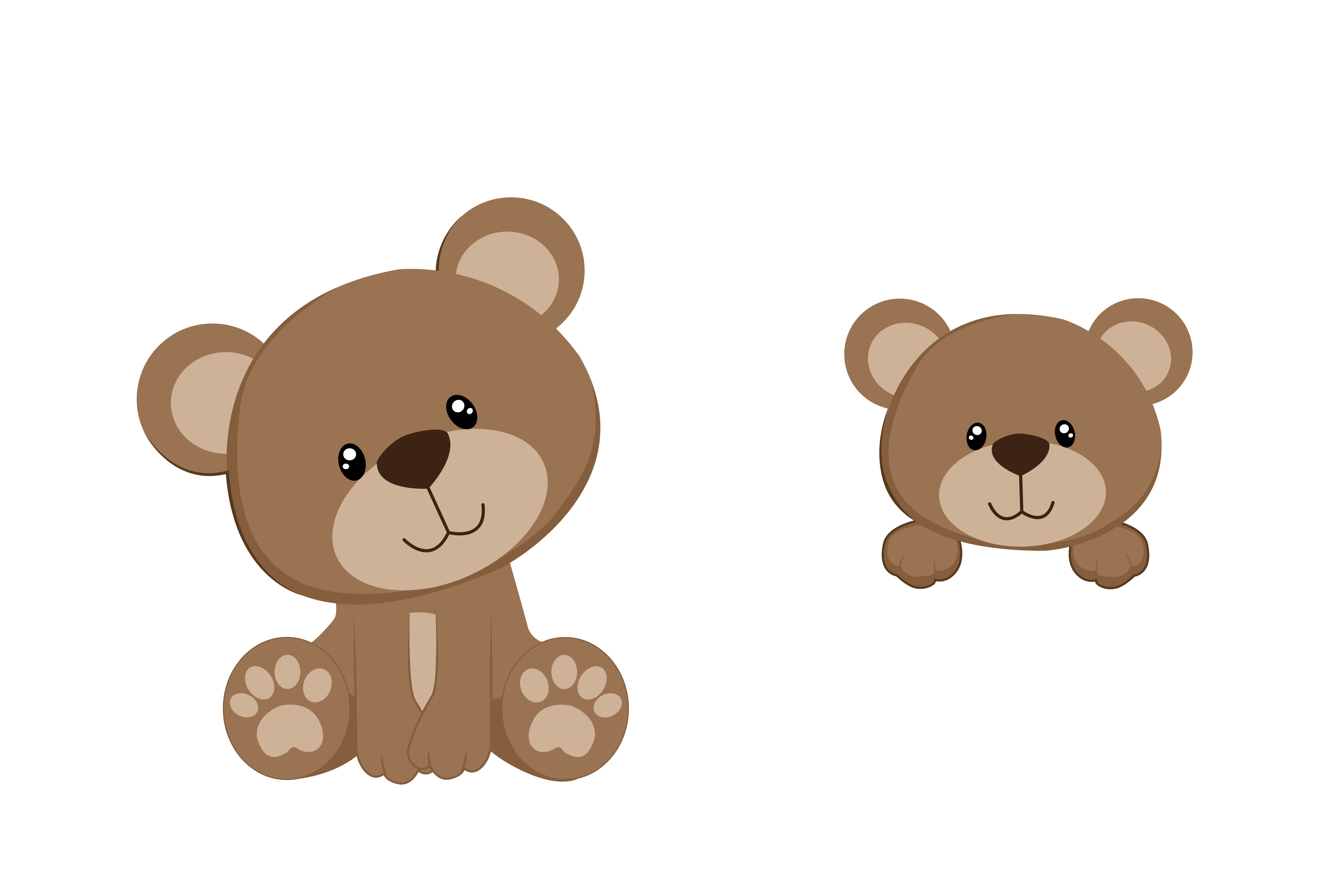 Teddy Bear Picture PNG