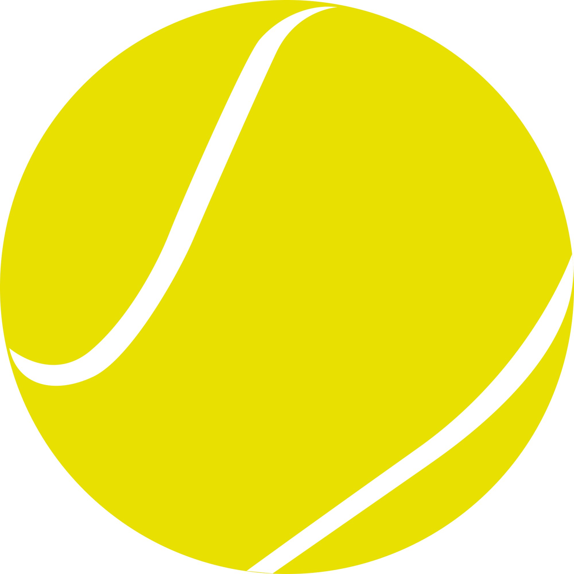 Tennis ball PNG image  Tennis ball PNG image