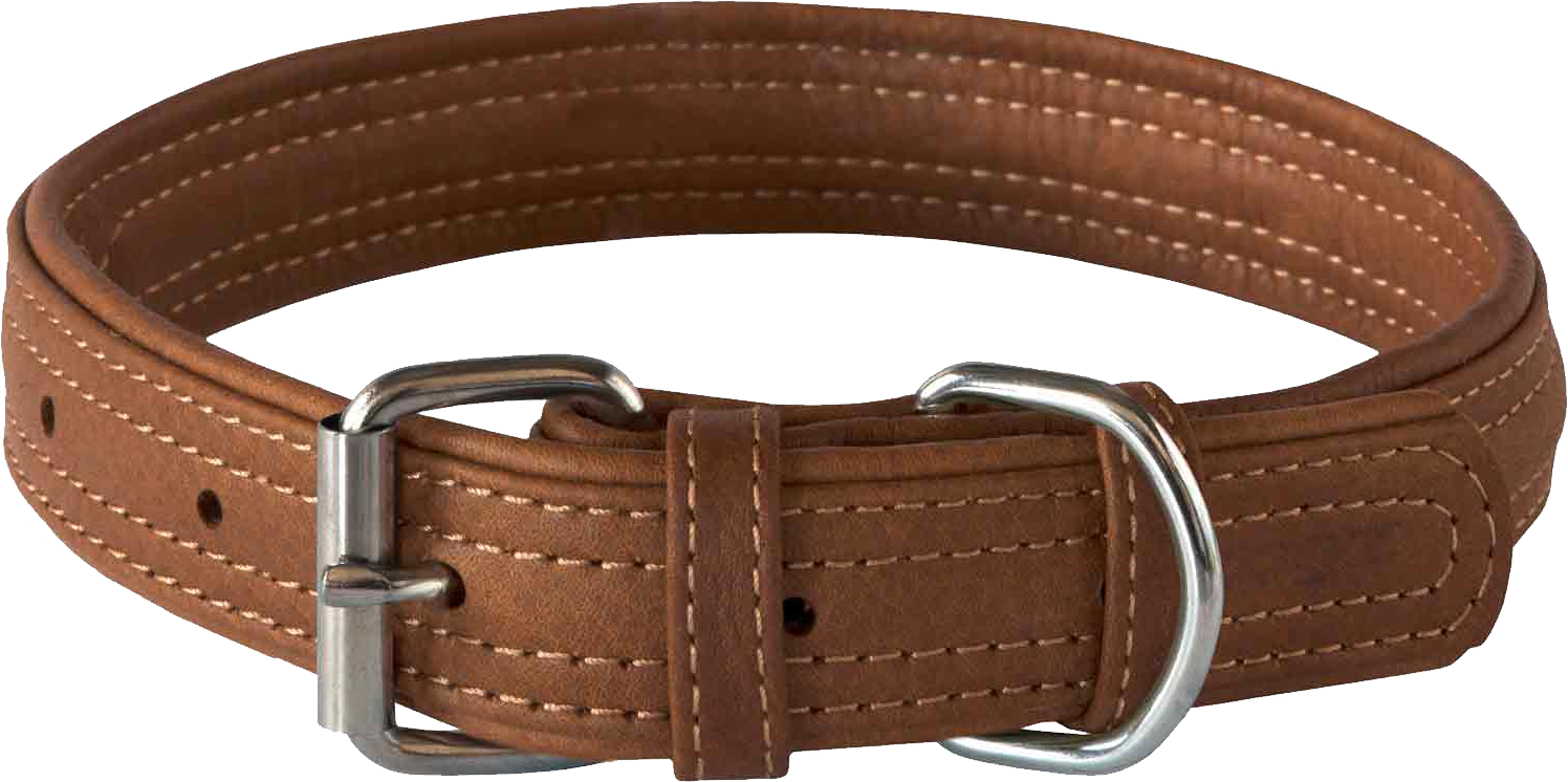 The Specially Designed Dog Collar Brown Images image #48123