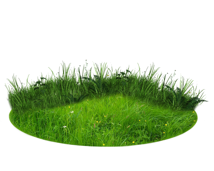 There Grass Png