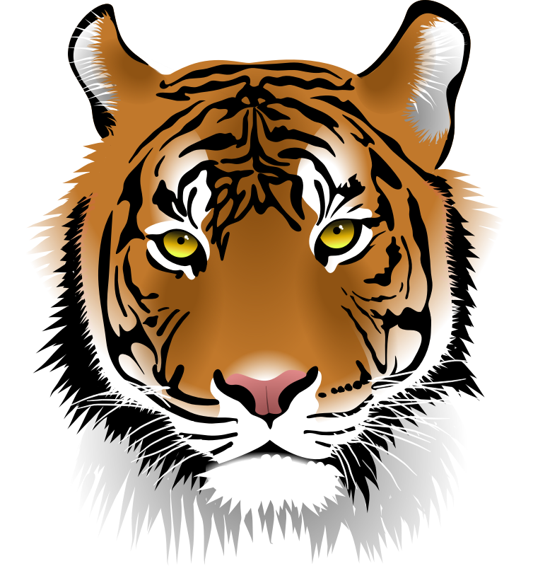 Tiger Head Png image #39198