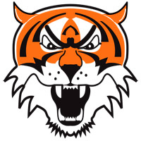 Icon Tiger Svg image #12811