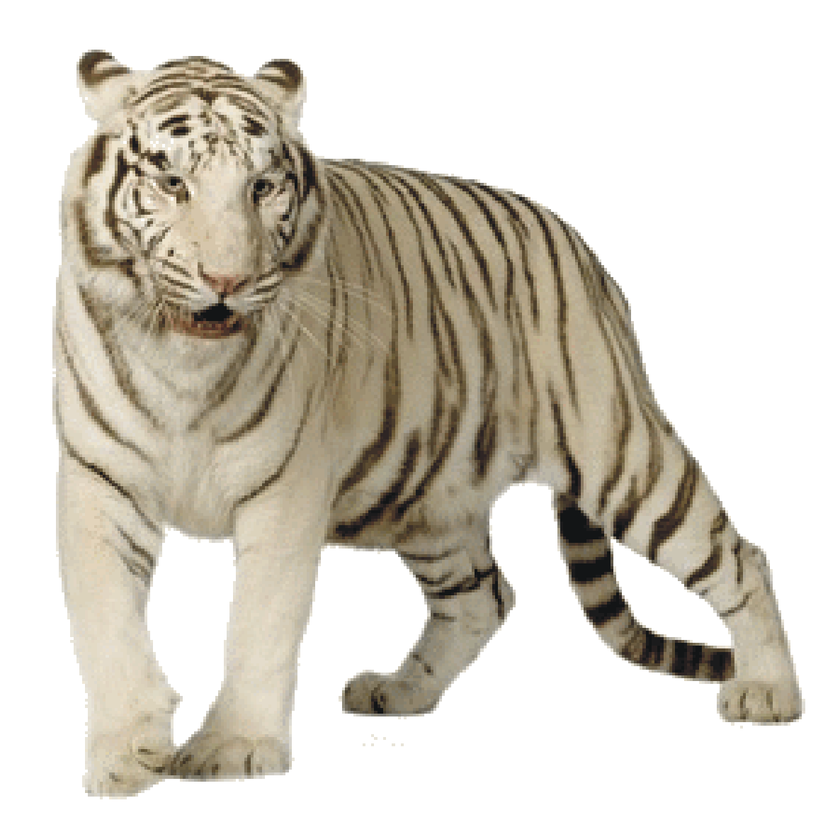 Get Tiger Png Pictures image #39179