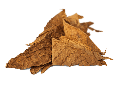 Tobacco, Brown, Leaves, Pictures Of Tobacco Leaves image #48046