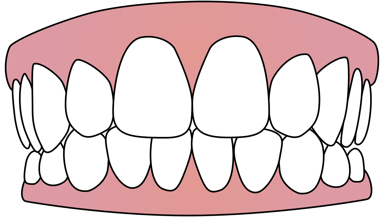Free Vector Download Png Tooth image #30120