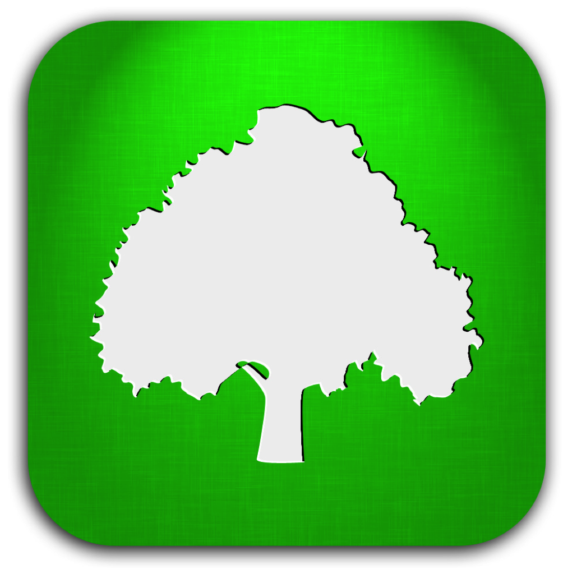 Tree Icon Tree Plan Tree Icon Png image #1539
