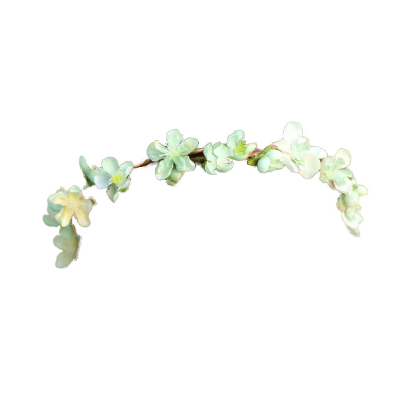Tumblr Transparent Flower Crown Image Png image #42583