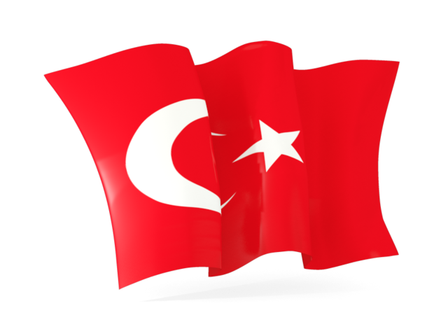 Turkey Flag .ico image #20391