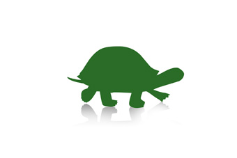 For Windows Icons Turtle image #10992