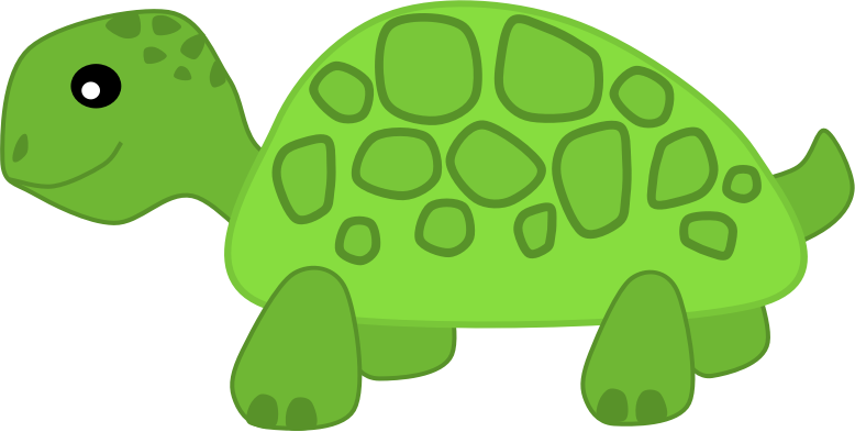 Download PNG Turtle Free