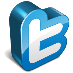 Twitter 3d Icon image #9791