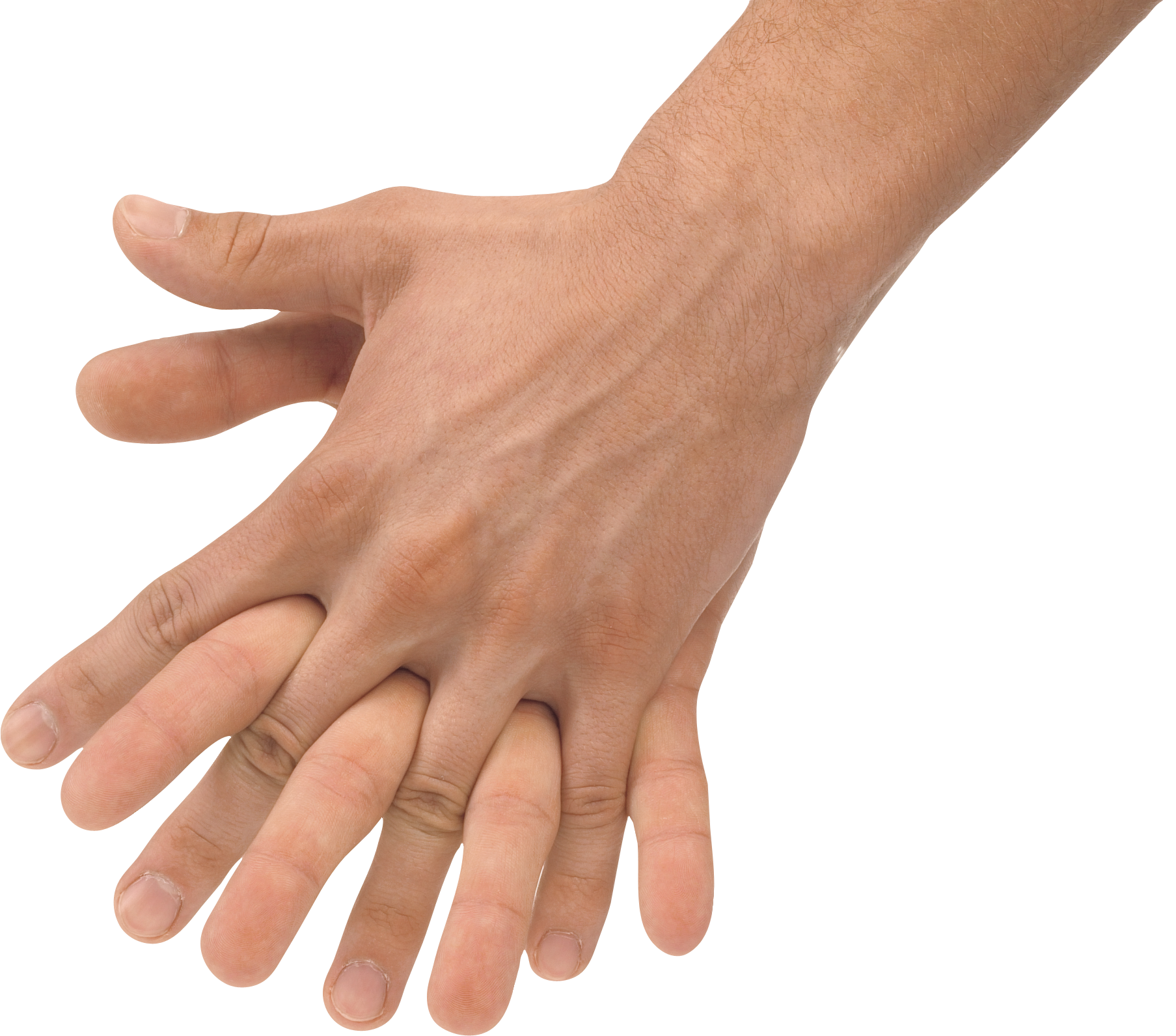 two hands, arm png