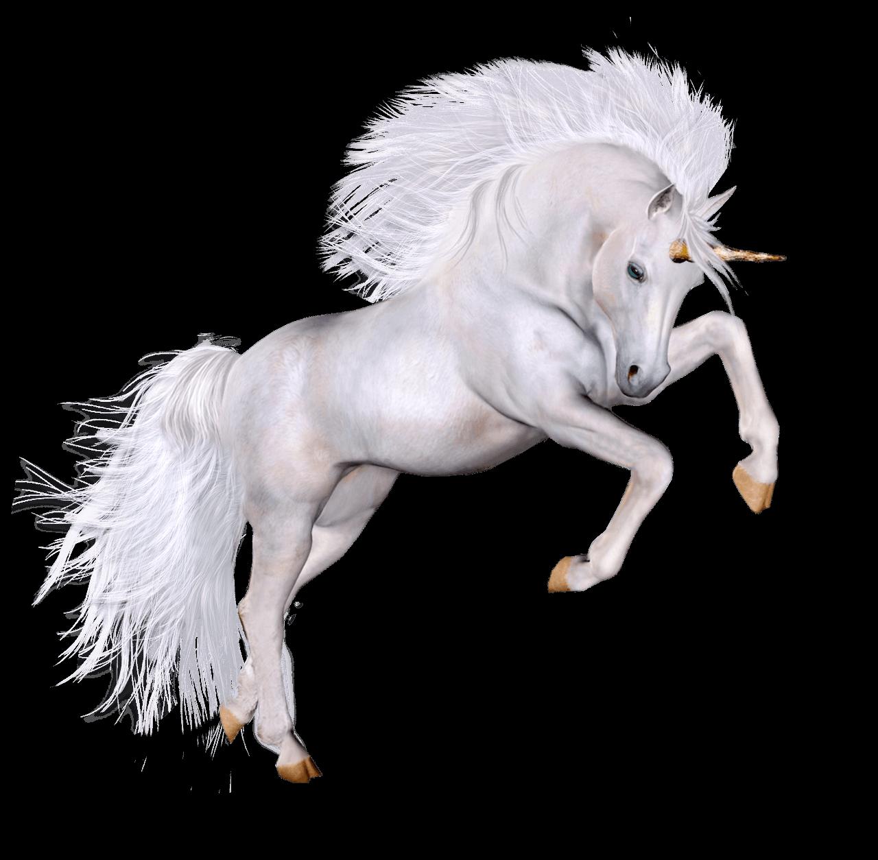 Unicorn Grace PNG image #44491