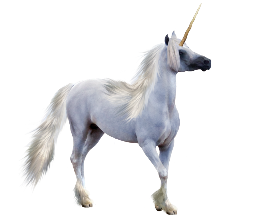 Unicorn Transparent Png