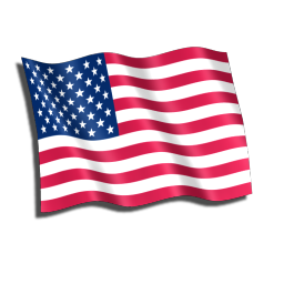Icon American Us Flag Vector image #8303